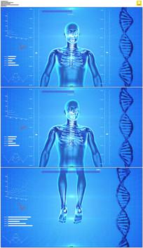 科技医疗人体动画视频素材