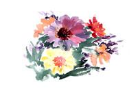 鲜艳花卉插画