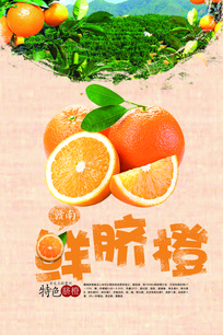 赣南脐橙果汁海报