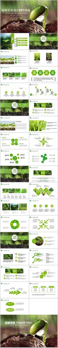 绿色清新植物发芽动态ppt