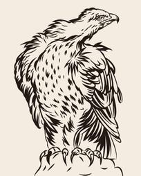 威風凜凜的矢量圖老鷹插畫