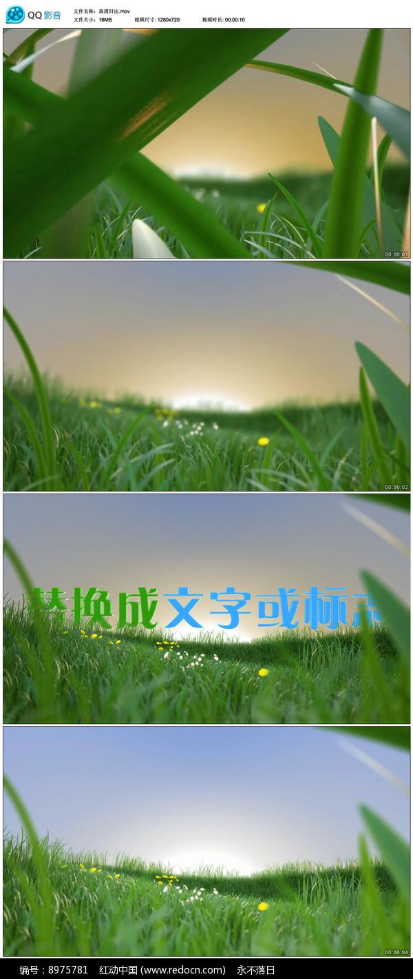 绿叶穿梭日出标志展示模板 图片
