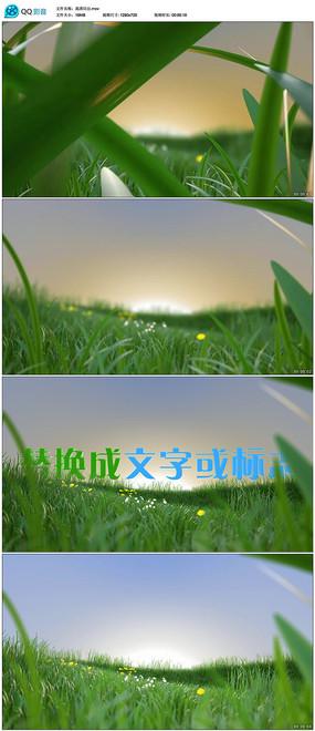 绿叶穿梭日出标志展示模板
