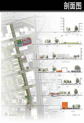 城市道路剖面图 JPG