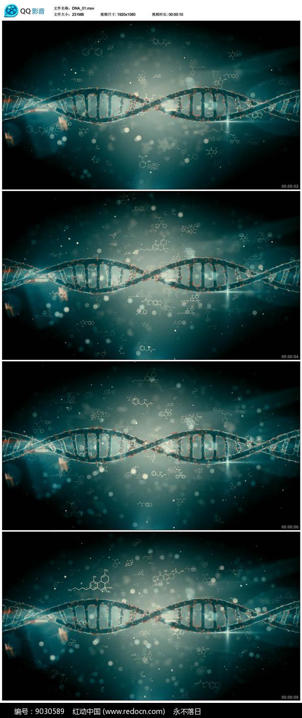 DNA医学医疗背景视频 图片