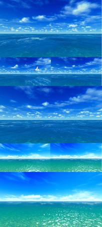 蓝天大海海鸥飞翔美视频
