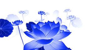 中国风青花瓷荷花循环动画