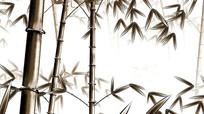 中国风水墨工笔3D单色竹子视频