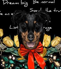 流行时尚狗和花的组合图案