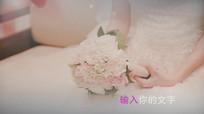 唯美婚礼视频会声会影模板