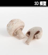 白蘑菇3D模型