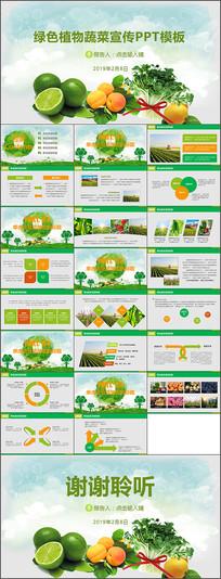 蔬菜农产品宣传ppt模板