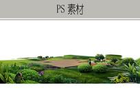 草坪植物景观设计PS素材