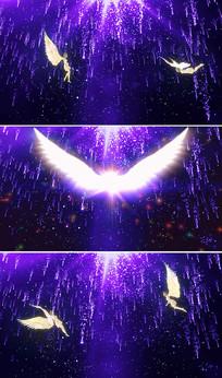 挥着翅膀的女孩配乐成品视频