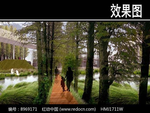 某华侨城水杉林步道效果图图片