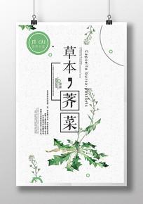 新鲜荠菜营养健康蔬菜海报