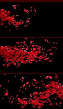 带通道花瓣飞舞视频素材