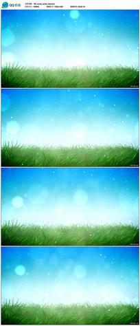 微风吹拂绿色草地视频