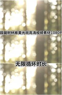 朦胧光斑树林唯美夕阳梦境视频