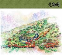 世界园艺博览会植物园区手绘图