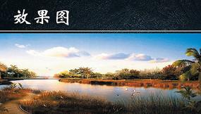 黄昏下湿地景色效果图