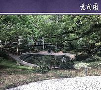 水池景观意向图