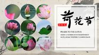 中国风荷花节旅游海报psd