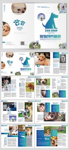 宠物行业宣传画册