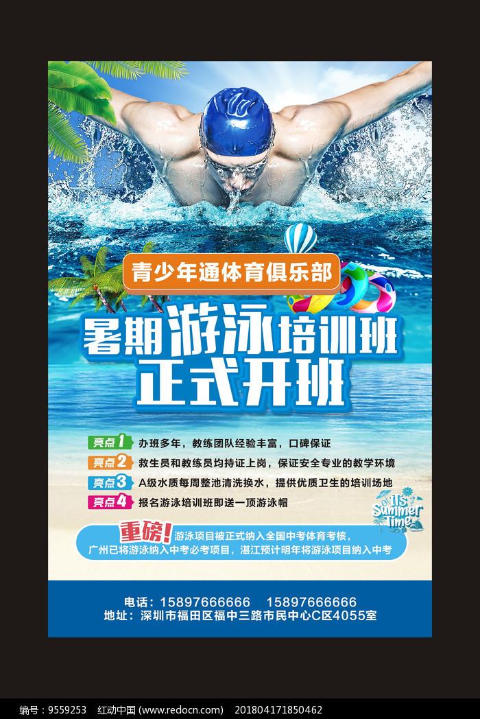 游泳招生海报设计图片