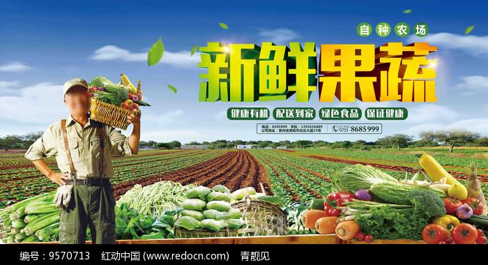 新鲜果蔬免费配送海报图片