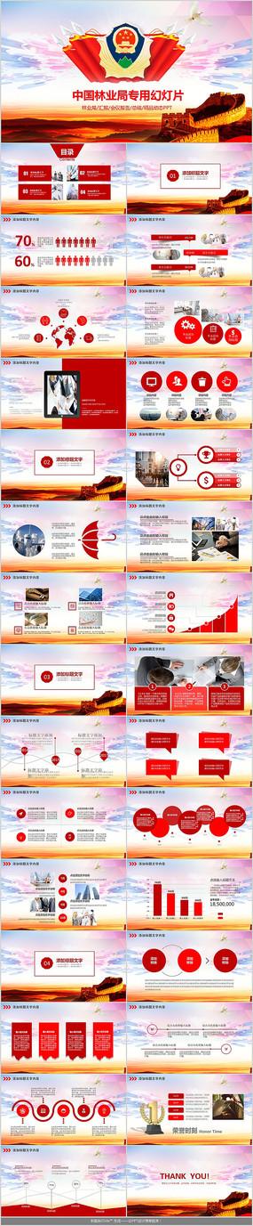 中国林业局工作总结PPT模板