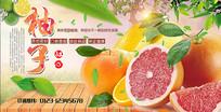 高端绿色柚子海报设计