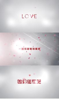 唯美花瓣婚礼视频字幕模板
