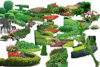 png绿篱素材