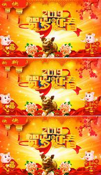2019贺岁迎春猪年大吉视频