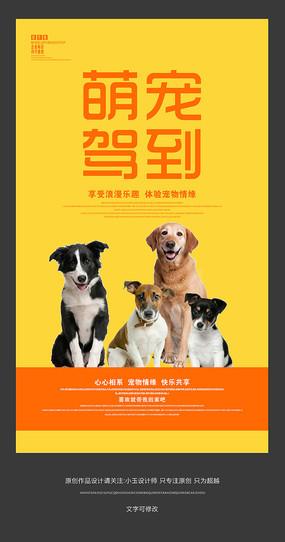 宠物店宣传海报设计