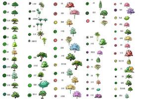 手绘植物平面ps素材 PSD