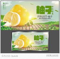 柚子促销宣传海报