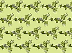 黄绿色花朵平铺背景