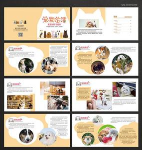 宠物宣传画册