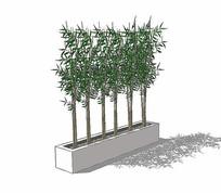 竹子阵列盆栽