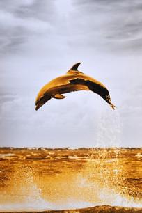 手绘海豚跳水油画图