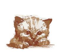 可爱矢量小猫插画