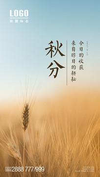 秋分麦穗意境海报设计