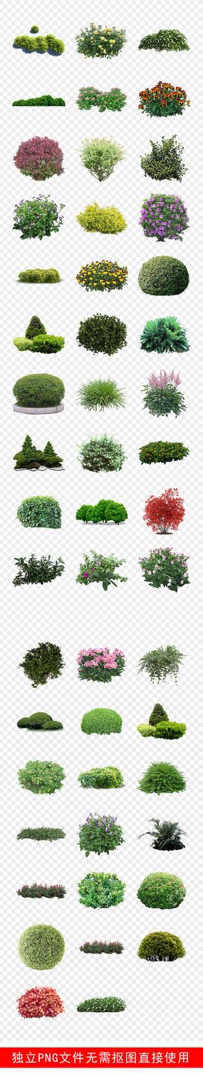 植物背景素材