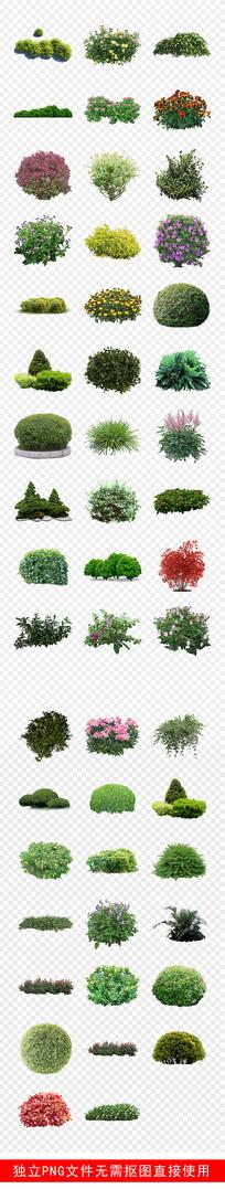 灌木园林景观效果图植物素材