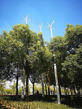 测风向风车景观绿化