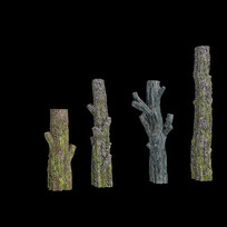 干树枝,古树枝,树干,枝干