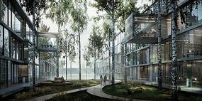 玻璃建筑景观园路