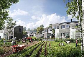 乡村别墅庭院菜园